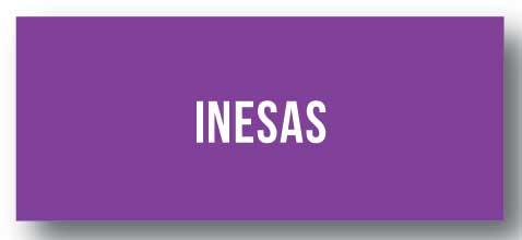 INESAS