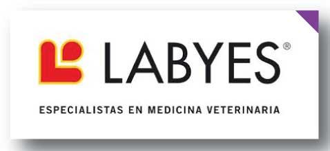 LABYES
